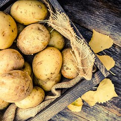 Woerner Holdings acquires potato shipper